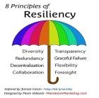 principles of resiliency-big